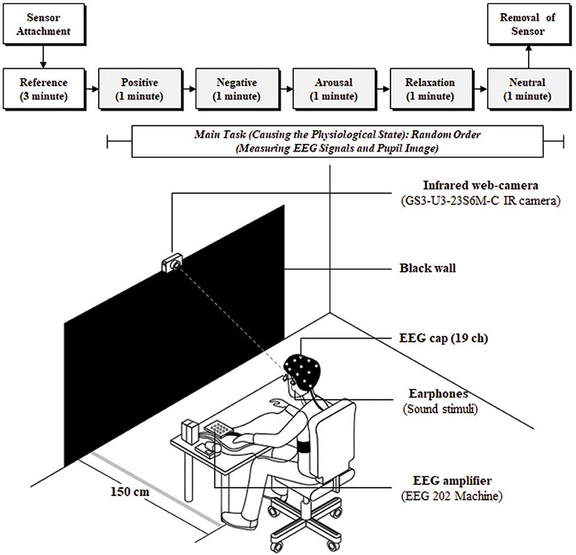 Frontiers | Infrared Camera-Based Non-contact Measurement of Brain