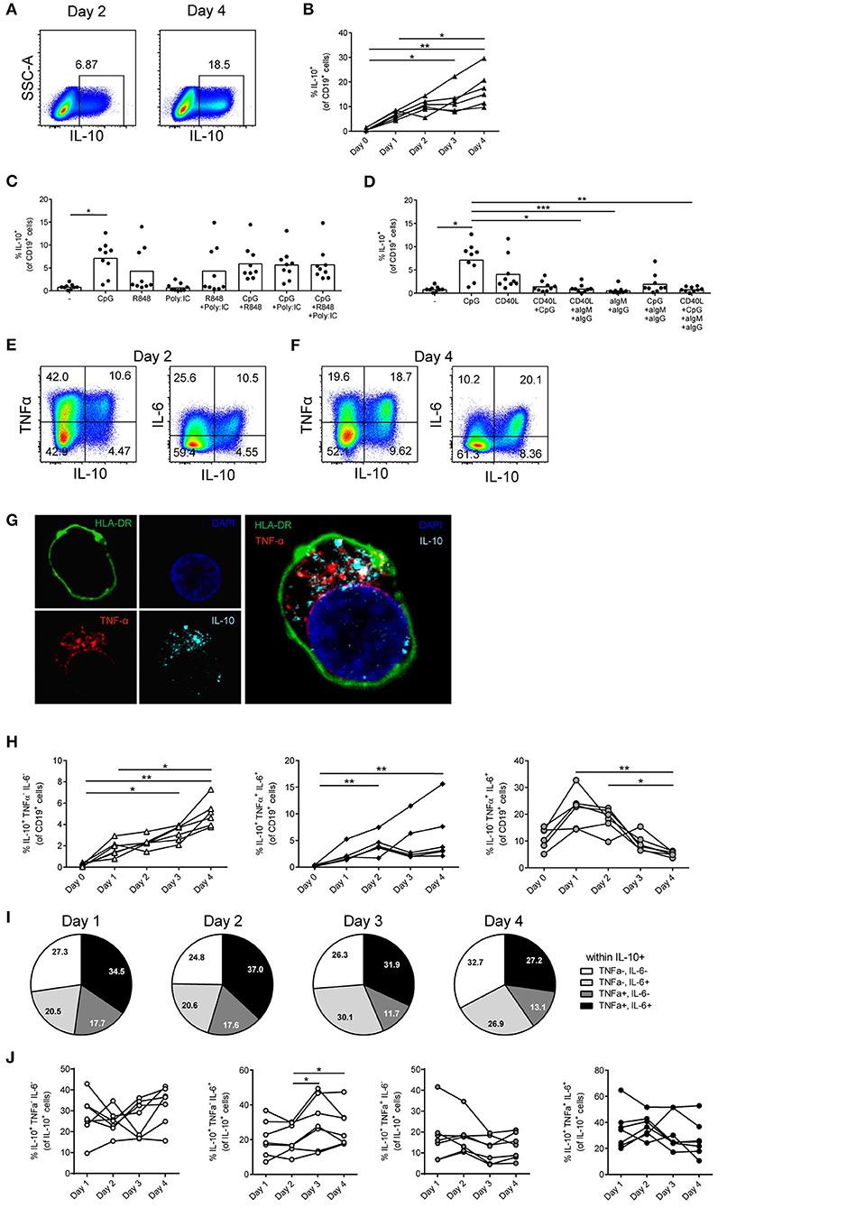 Frontiers | In vitro-Induced Human IL-10+ B Cells Do Not