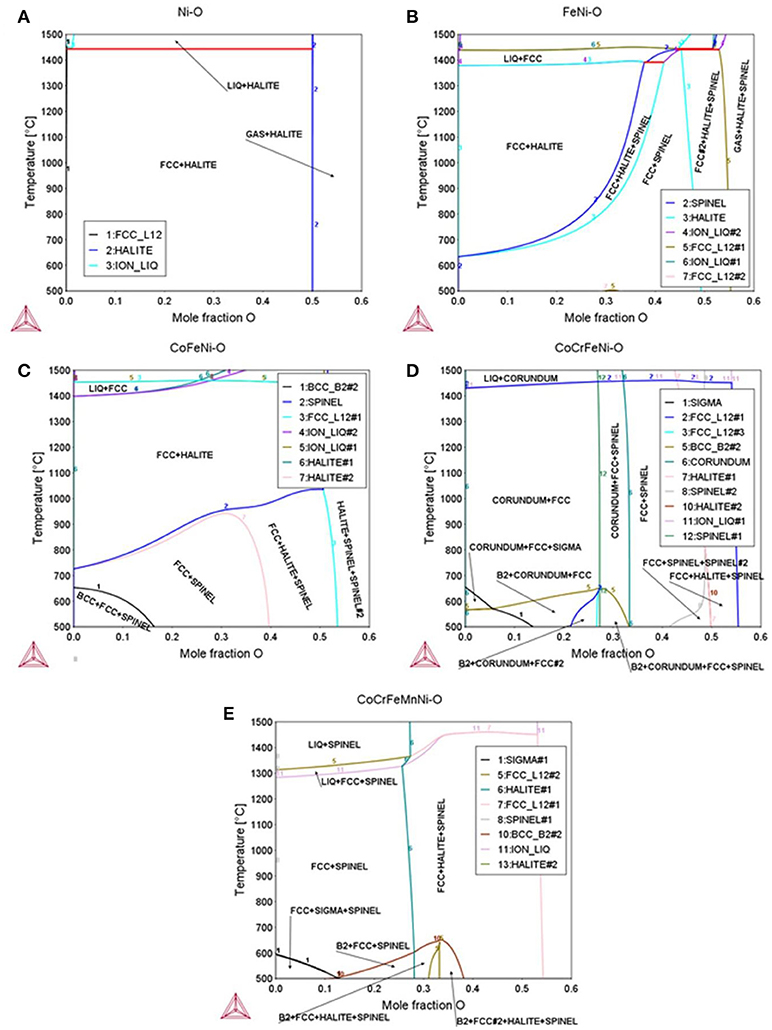 Frontiers | Nonlinear Oxidation Behavior in Pure Ni and Ni