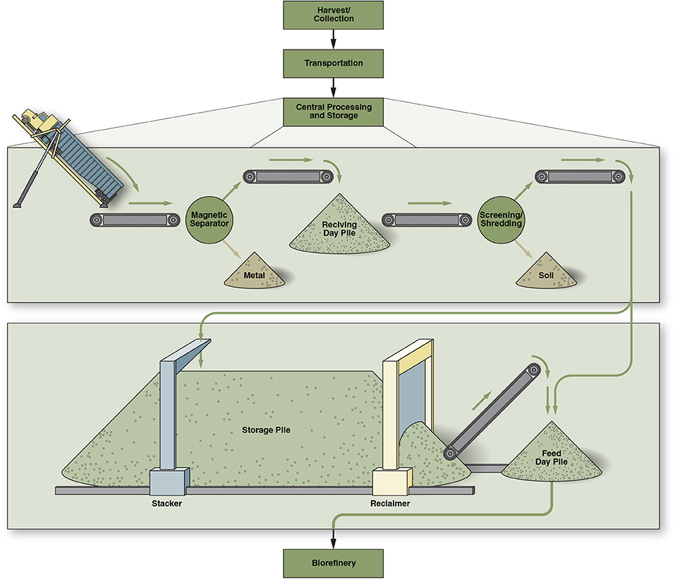 Frontiers | Techno-Economic Assessment of a Chopped Feedstock