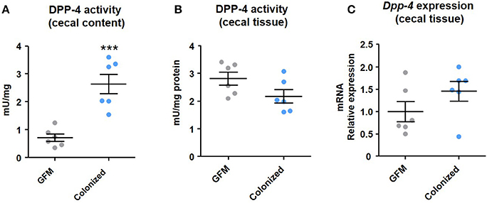 Frontiers | The Potential Role of the Dipeptidyl Peptidase-4
