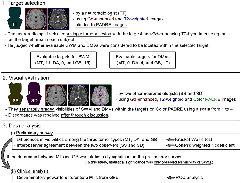 Frontiers Differentiation Of Brain Metastases And Gliomas Based On
