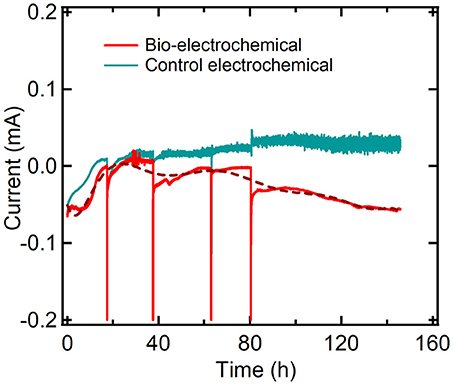 Frontiers | Biological and Bioelectrochemical Systems for