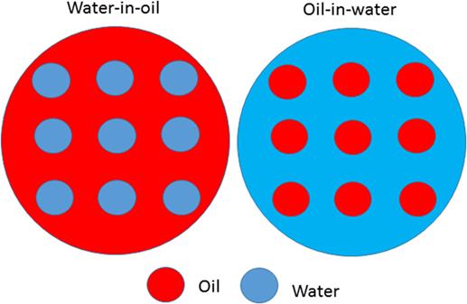 איור 1 - דוגמה לשני סוגי תחליבים את חלקיקי המים מייצג צבע כחול, ואת חלקיקי השמן – צבע אדום.