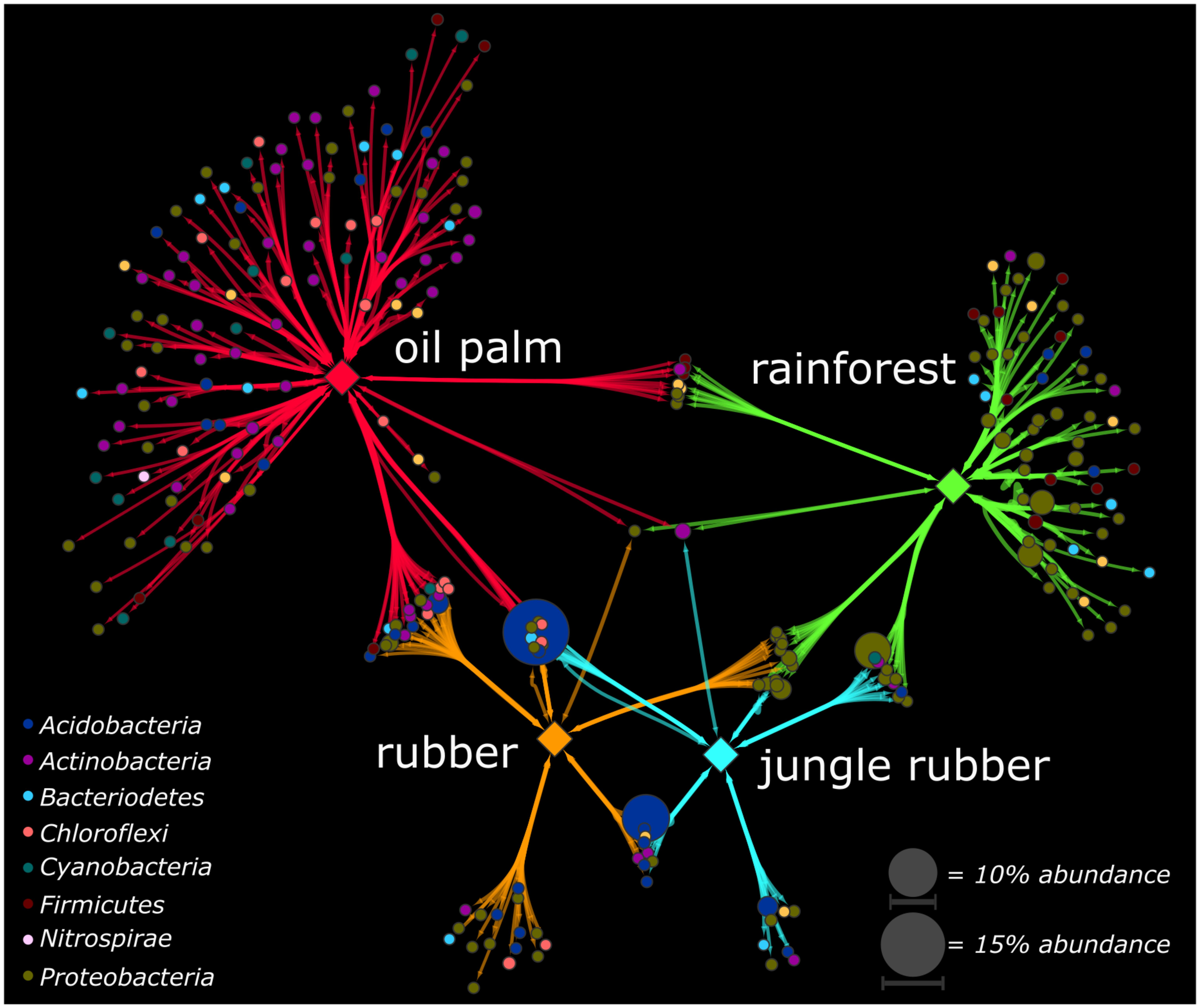 Frontiers | How Rainforest Conversion to Agricultural Systems in