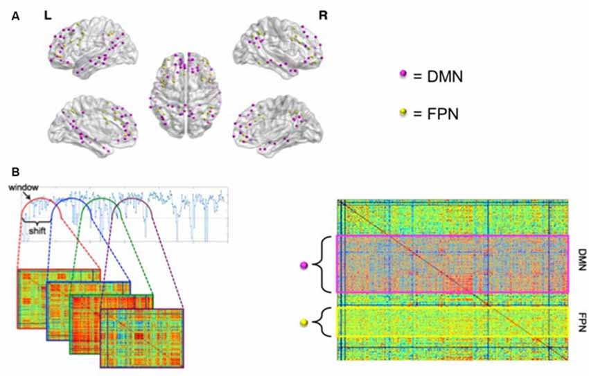 Frontiers | Dynamic Functional Connectivity and Symptoms of