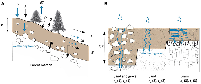Frontiers | Prediction of Soil Formation as a Function of