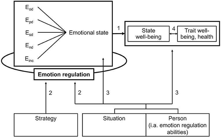 Emotionen - Entwicklung und Regulation (German Edition)
