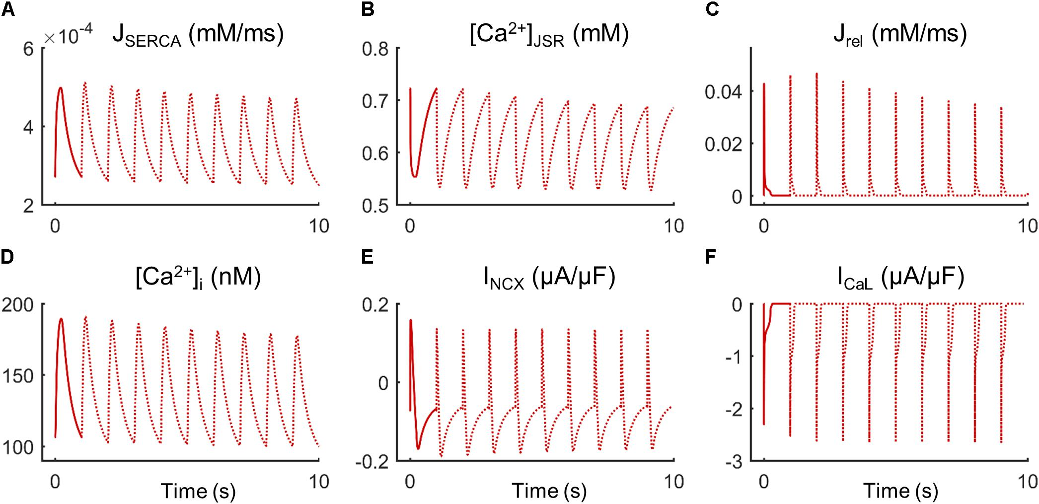 Frontiers | Ca2+ Cycling Impairment in Heart Failure Is