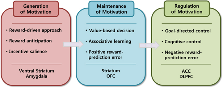 the relationship between playing games and metacognitive awareness