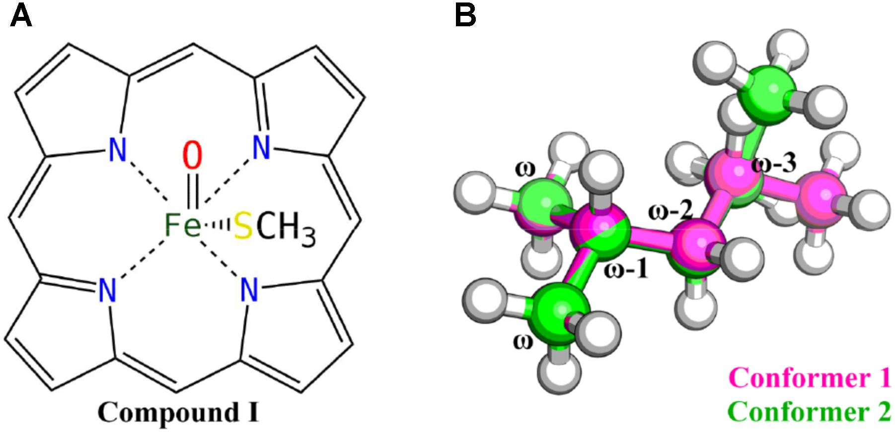 Frontiers | Computational Insight Into Vitamin K1 ω-Hydroxylation by