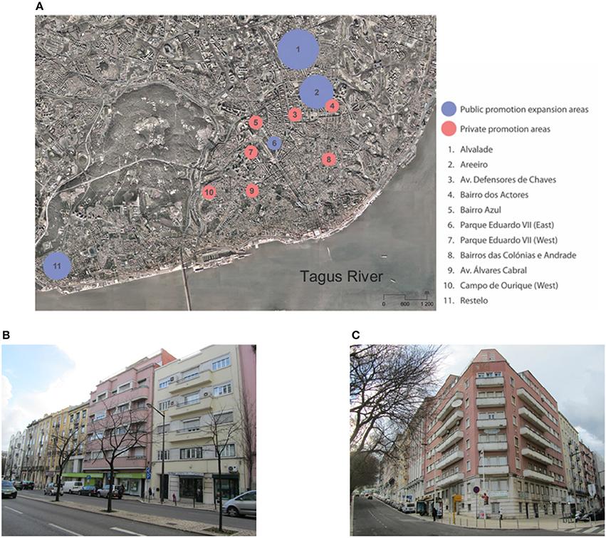 Frontiers | Seismic Behavior of Lisbon Mixed Masonry-RC