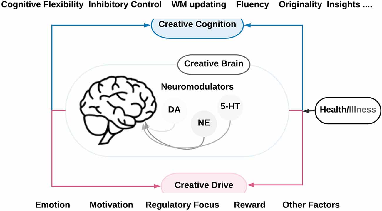 Genetic Convergence Between Cognition >> Frontiers The Link Between Creativity Cognition And Creative