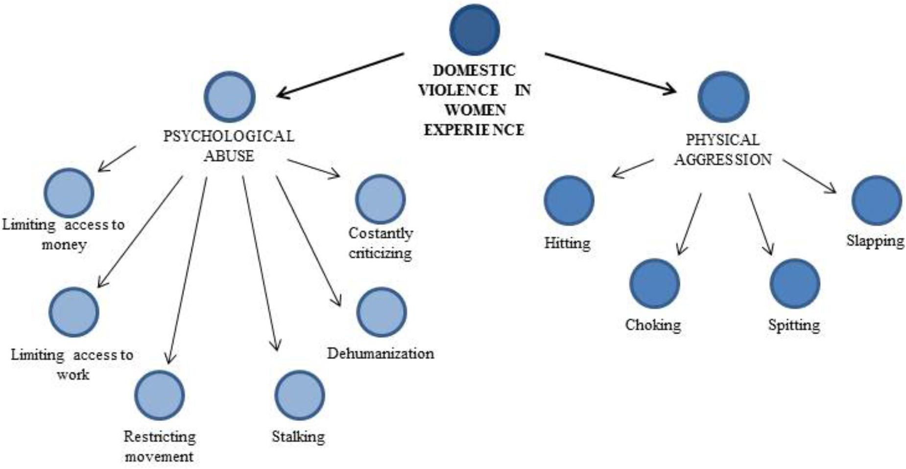 Frontiers | Domestic Violence in Separated Couples in