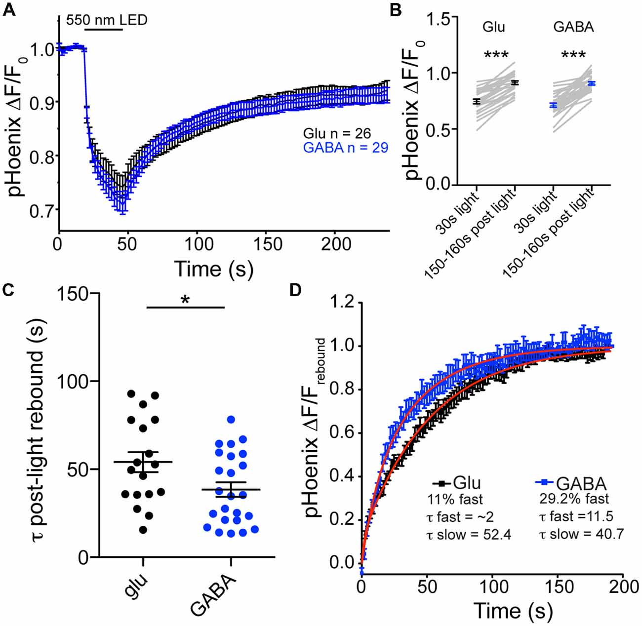 Frontiers | Differential pH Dynamics in Synaptic Vesicles From