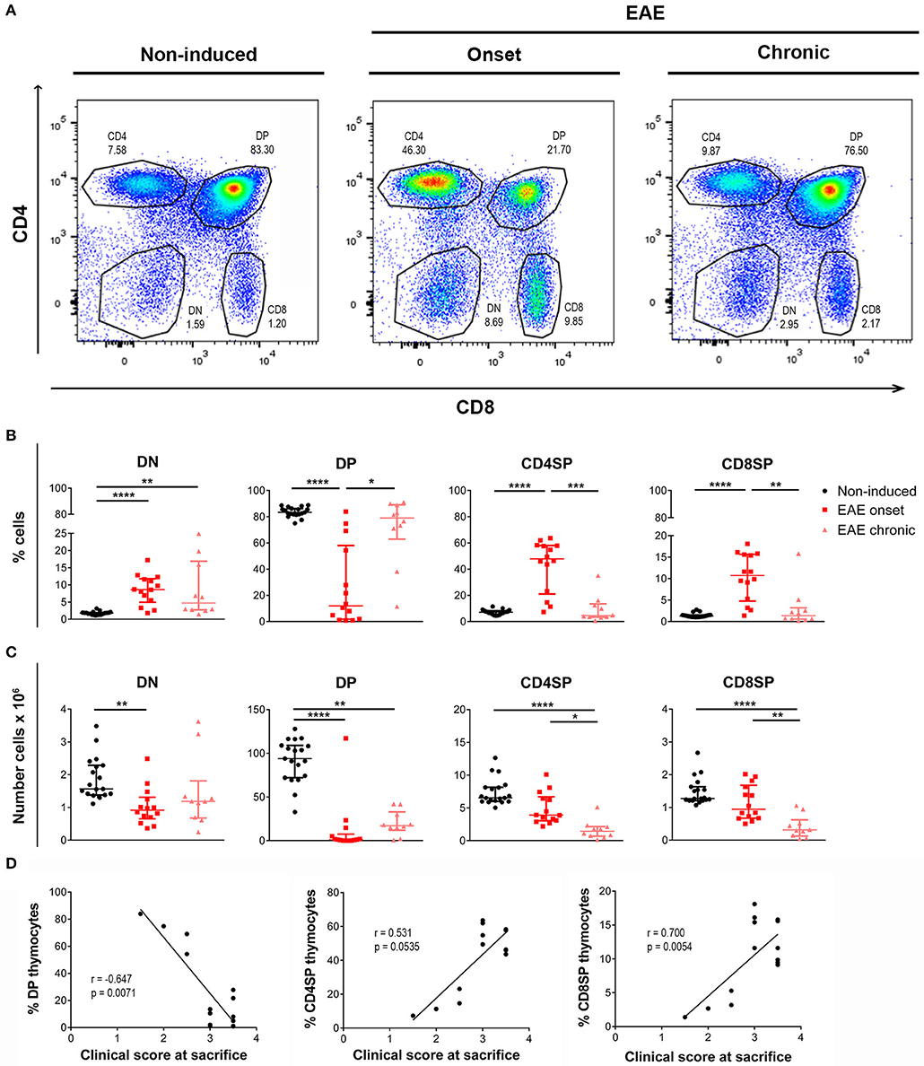 Frontiers | Immune Thymic Profile of the MOG-Induced