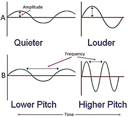 Figure 1 - Amplitude and frequency represented as waves.