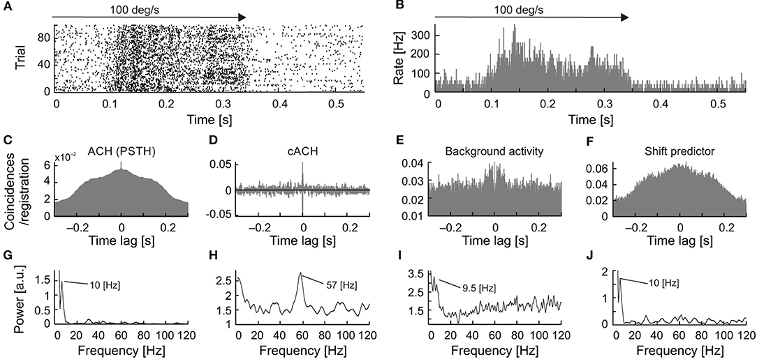 Frontiers | Oscillations in Spontaneous and Visually Evoked Neuronal