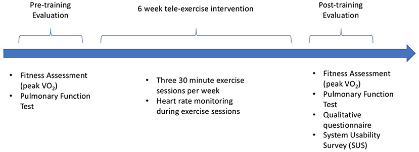 Frontiers | Tele-Exercise as a Promising Tool to Promote
