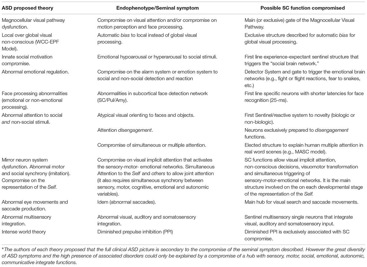 Frontiers | Autism Pathogenesis: The Superior Colliculus