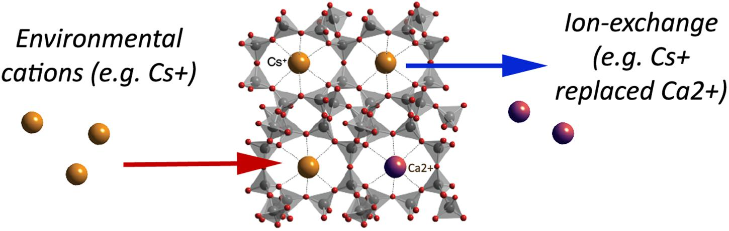 Frontiers | Critical Review on Zeolite Clinoptilolite Safety and