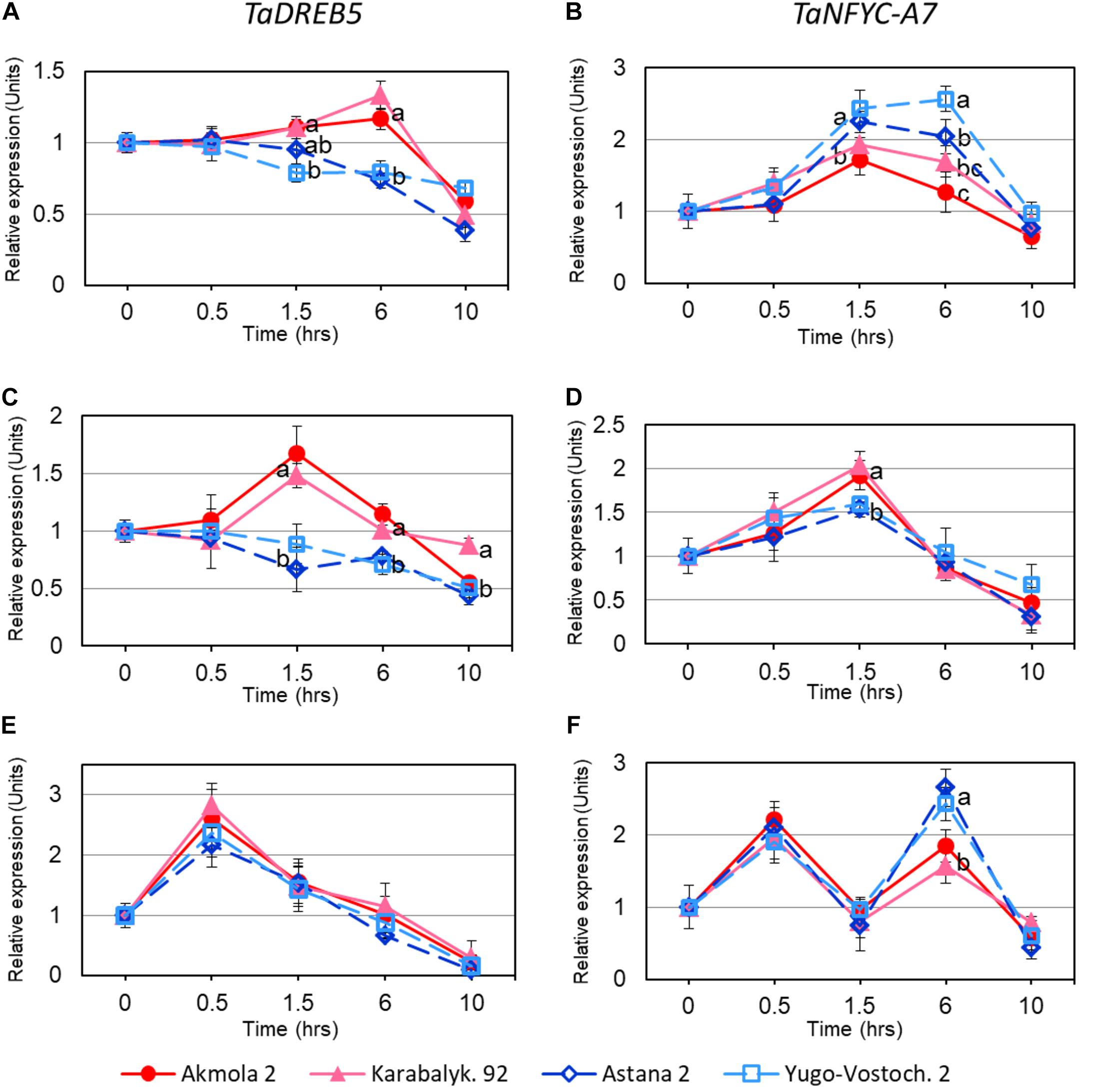Frontiers | Genes Encoding Transcription Factors TaDREB5 and