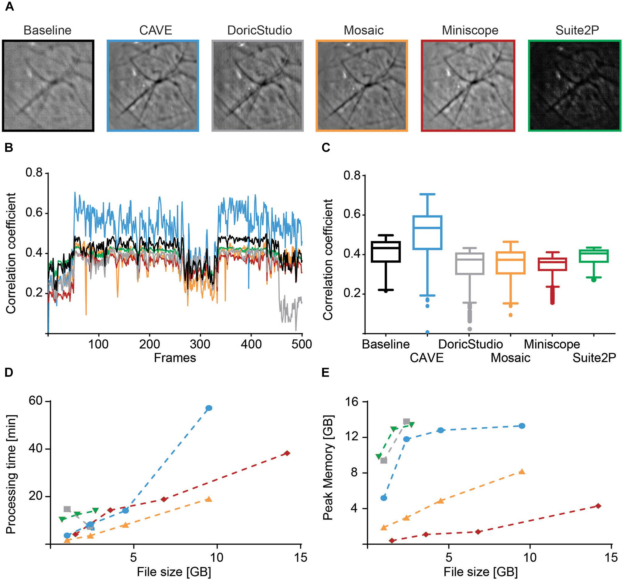 Frontiers | CAVE: An Open-Source Tool for Combined Analysis of Head