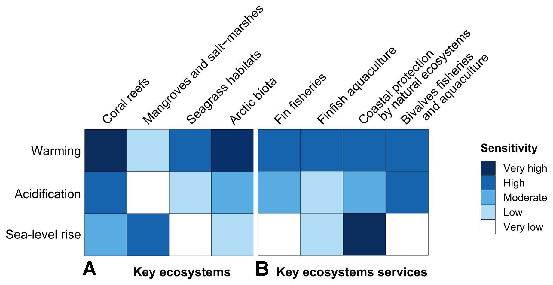 marine ecosystem articles