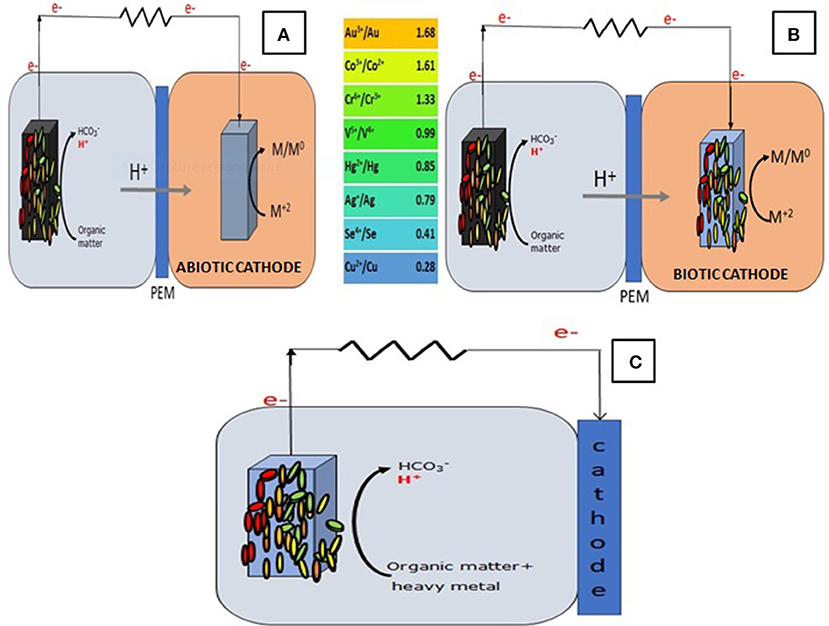 Frontiers | Challenges of Microbial Fuel Cell Architecture on Heavy