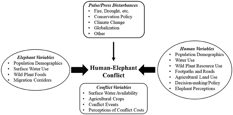 Frontiers | Human-Elephant Conflict: A Review of Current Management