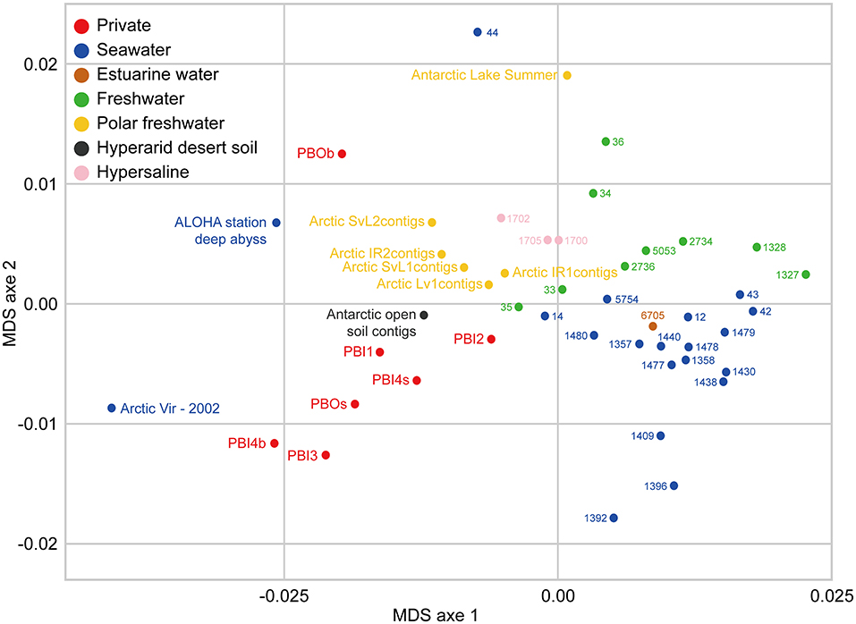 Frontiers | Viral Diversity and Its Relationship With