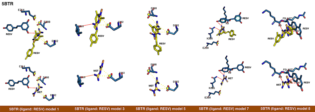 Frontiers | Metformin Is a Direct SIRT1-Activating Compound