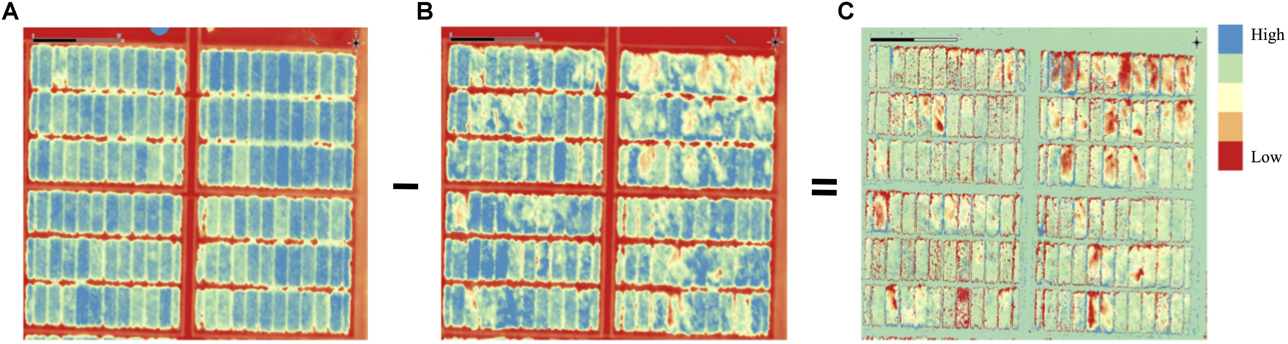 Frontiers   High-Throughput Phenotyping Enabled Genetic