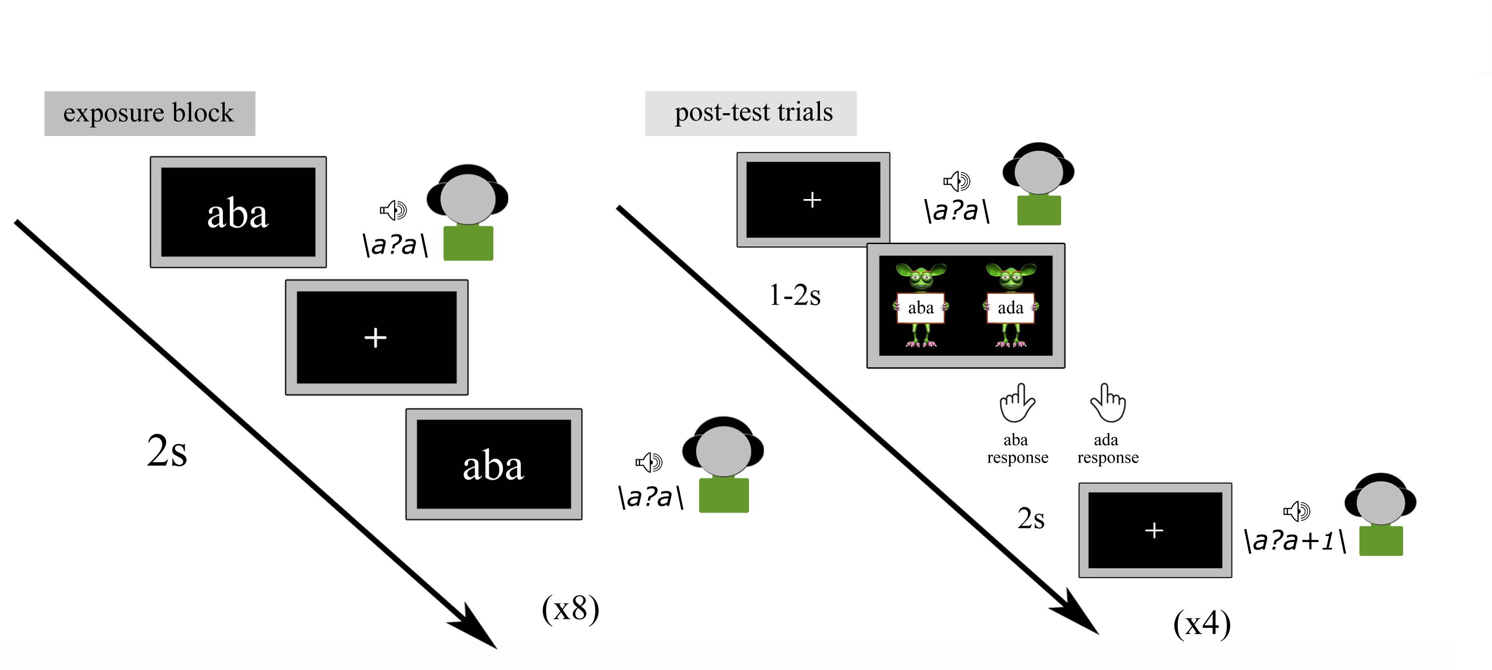 Frontiers | Reading-Induced Shifts in Speech Perception in