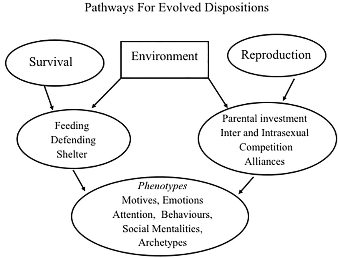 Frontiers | The Evolution of Prosocial and Antisocial