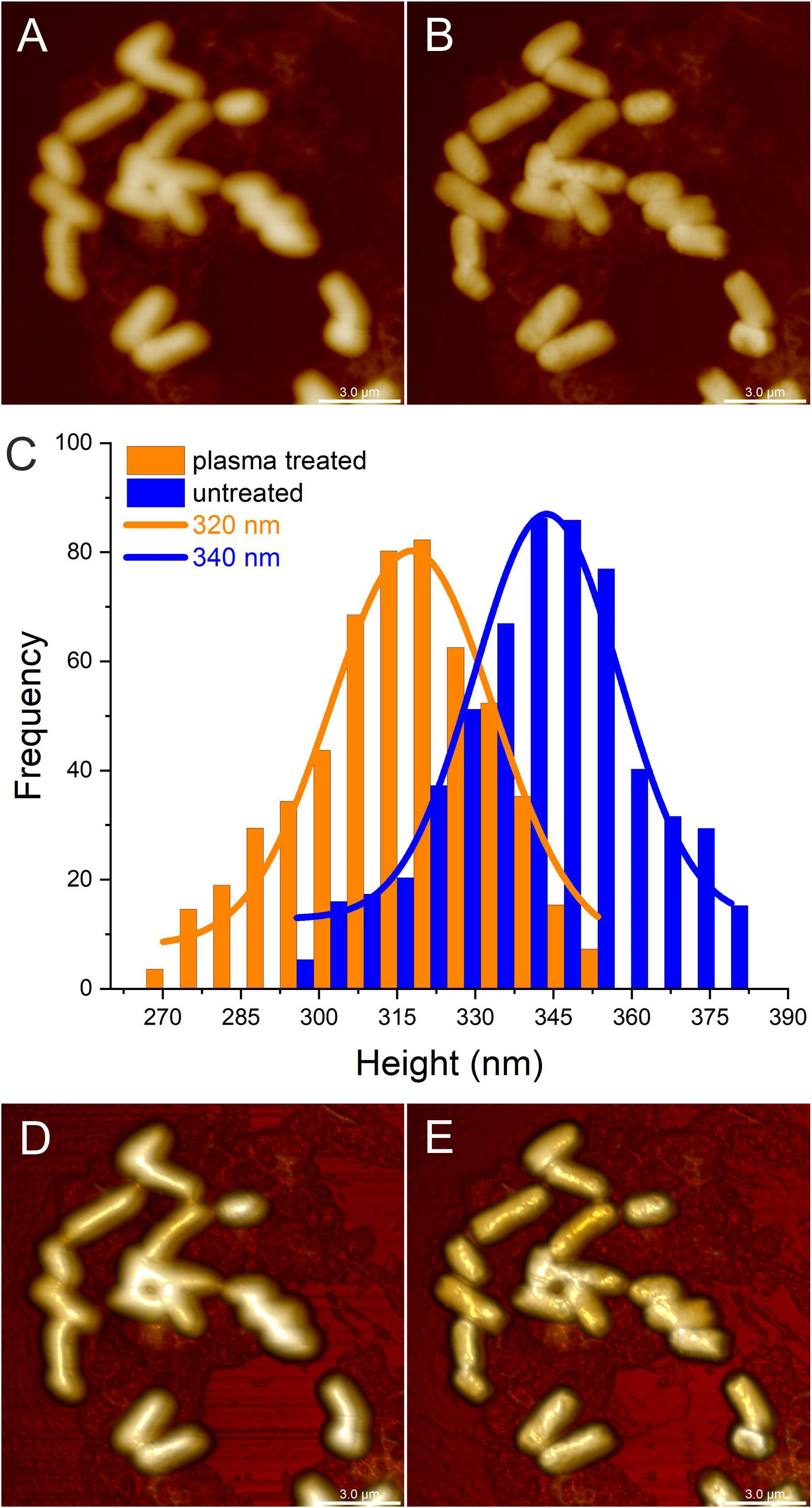 Frontiers | Characterization of Efficiency and Mechanisms of Cold