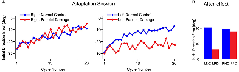 Figure 3 - (A) Shows the errors in the direction of movements when people are first exposed to the motor task.