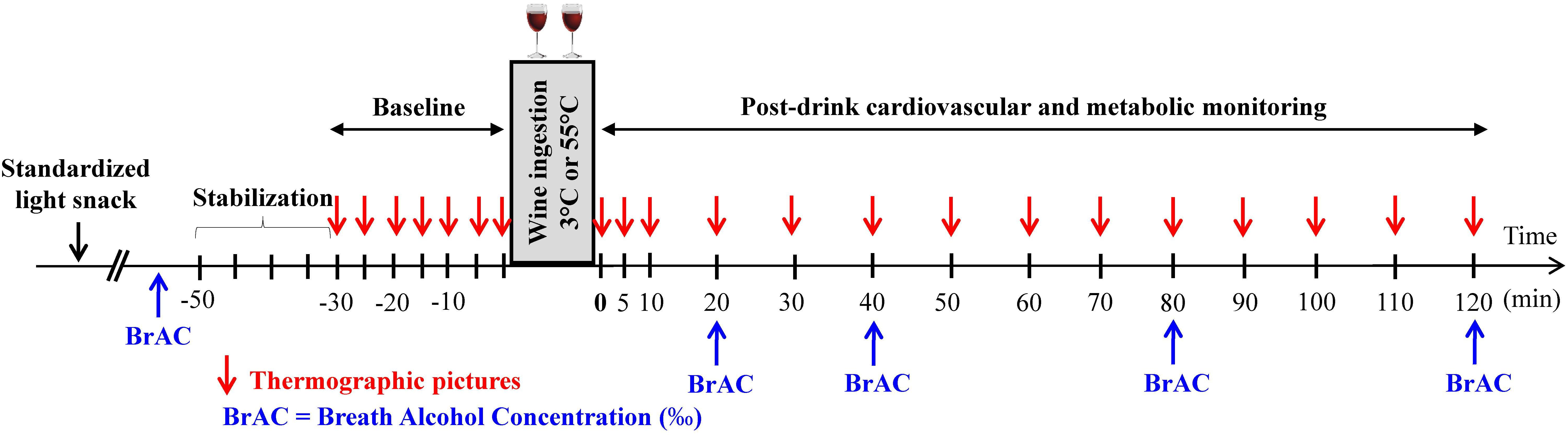 Frontiers   Early and Late Cardiovascular and Metabolic Responses to