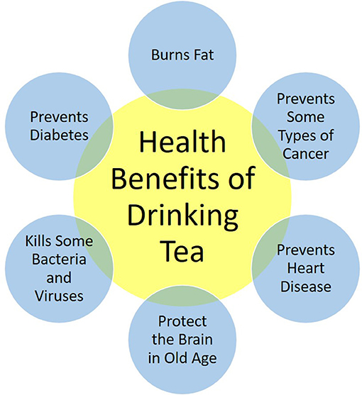 Figure 2 - Health benefits associated with the habit of drinking tea.