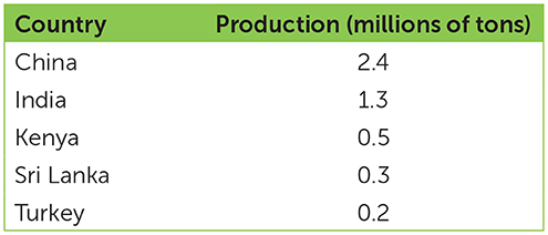 Table 1 - Top 5 largest producers of tea in 2016 (FAOSTAT, 2016).