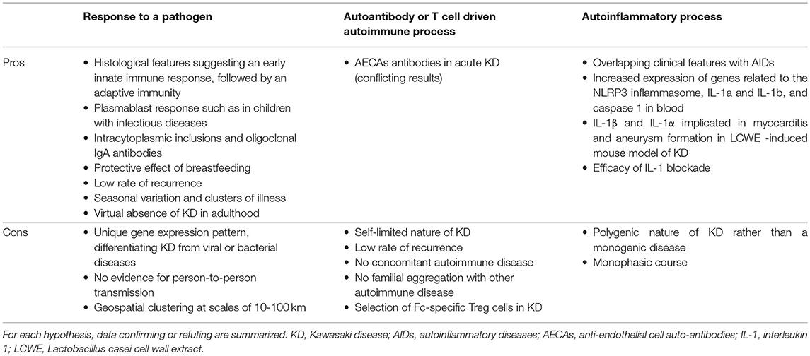 Shadow Health Musculoskeletal Model Documentation