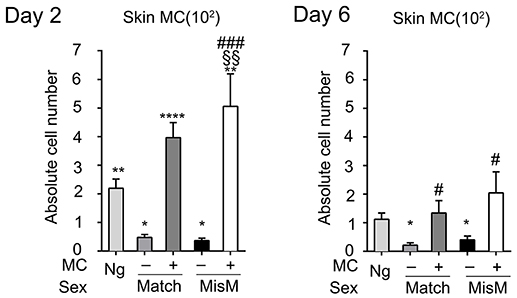 Frontiers | Mast Cell Degranulation Exacerbates Skin Rejection by