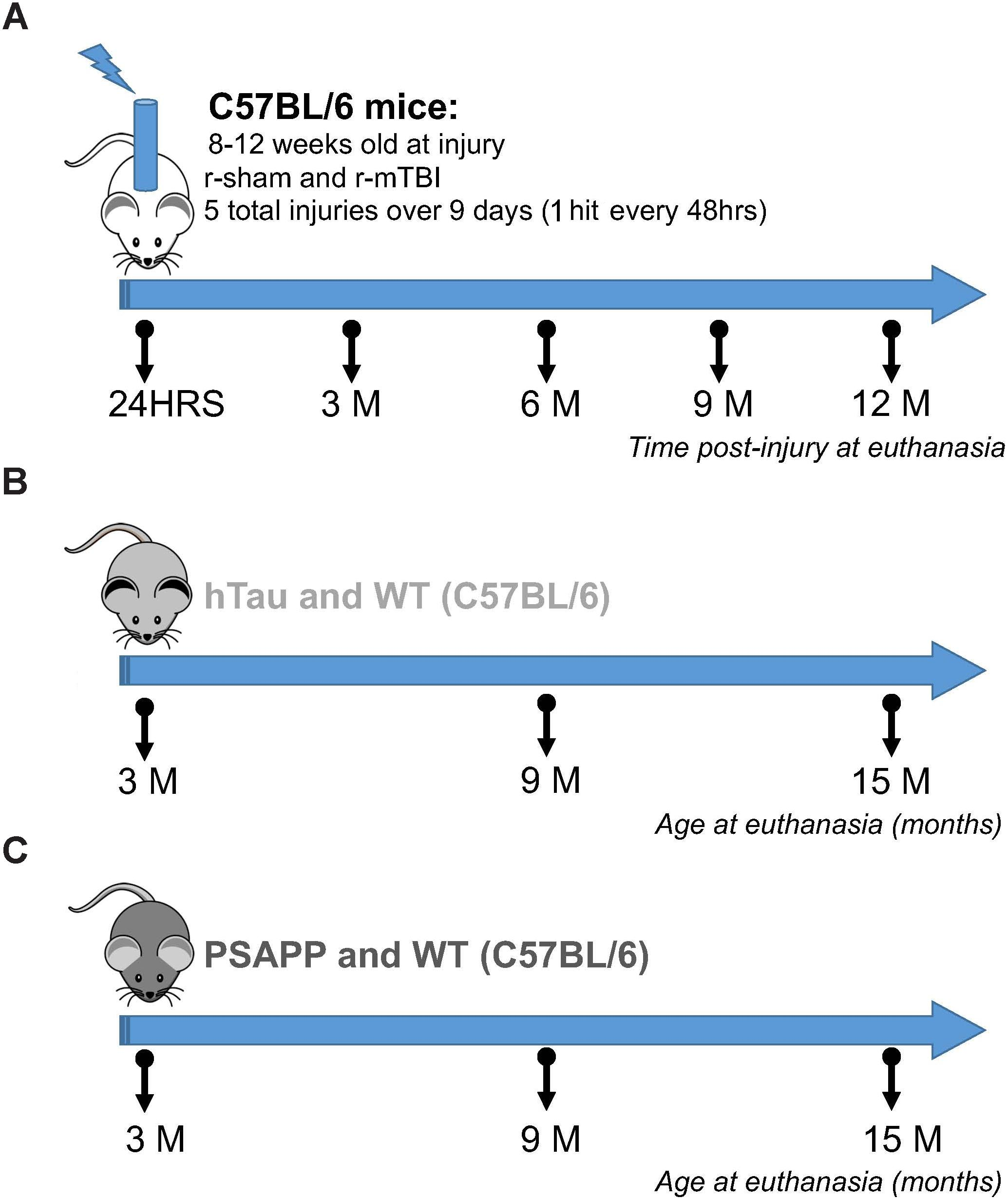 Frontiers | Unbiased Proteomic Approach Identifies Unique