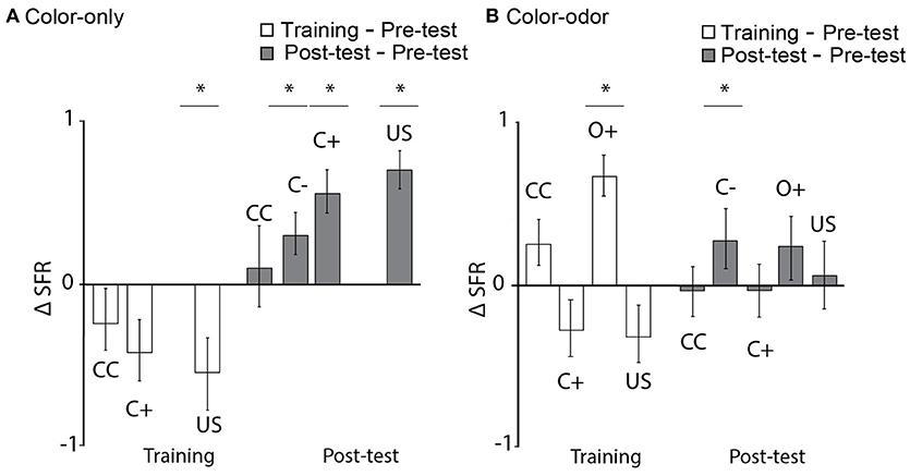 Frontiers   Learning and Its Neural Correlates in a Virtual