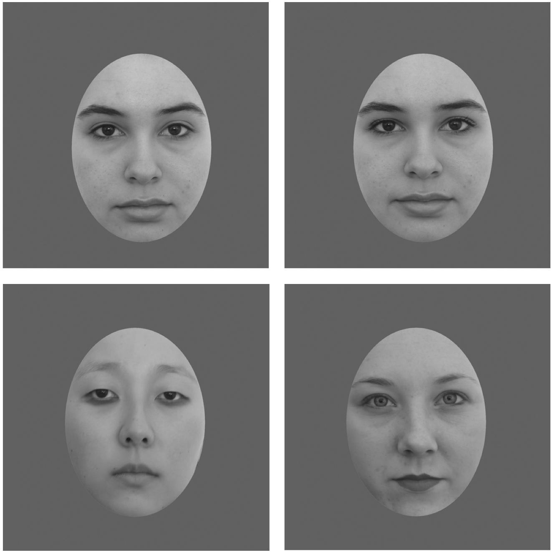 Facial attractiveness symmetry and cues of good genes