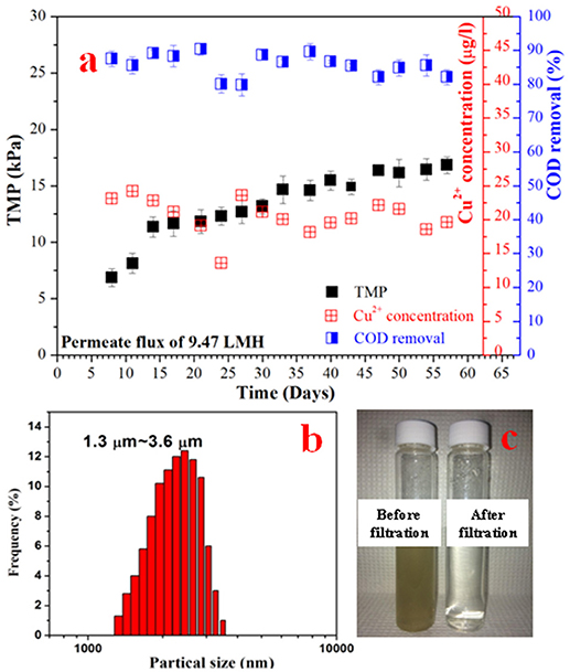 Frontiers | Dual-Function Conductive Copper Hollow Fibers