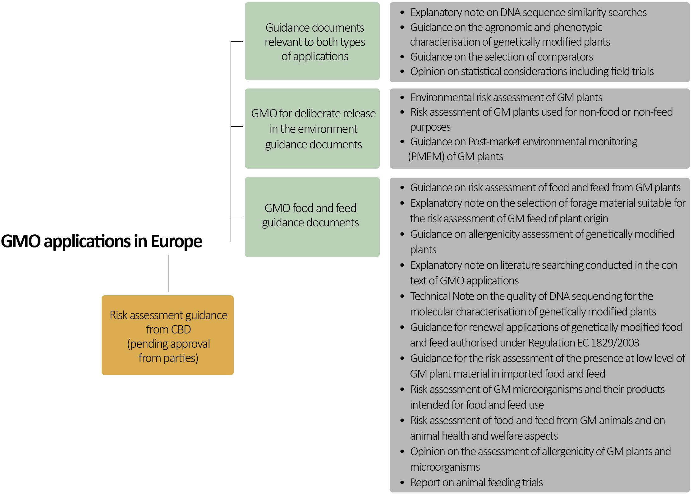 Frontiers | Revisiting Risk Governance of GM Plants: The