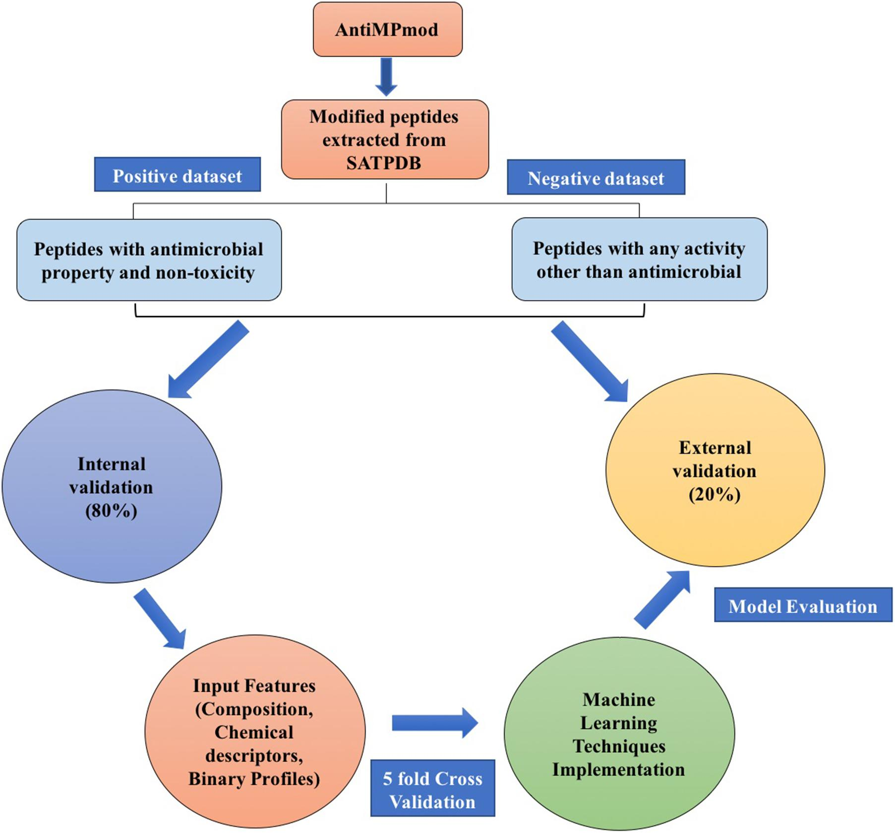 Frontiers | Prediction of Antimicrobial Potential of a