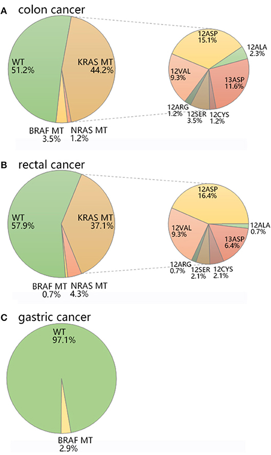 gastric cancer kras mutation)