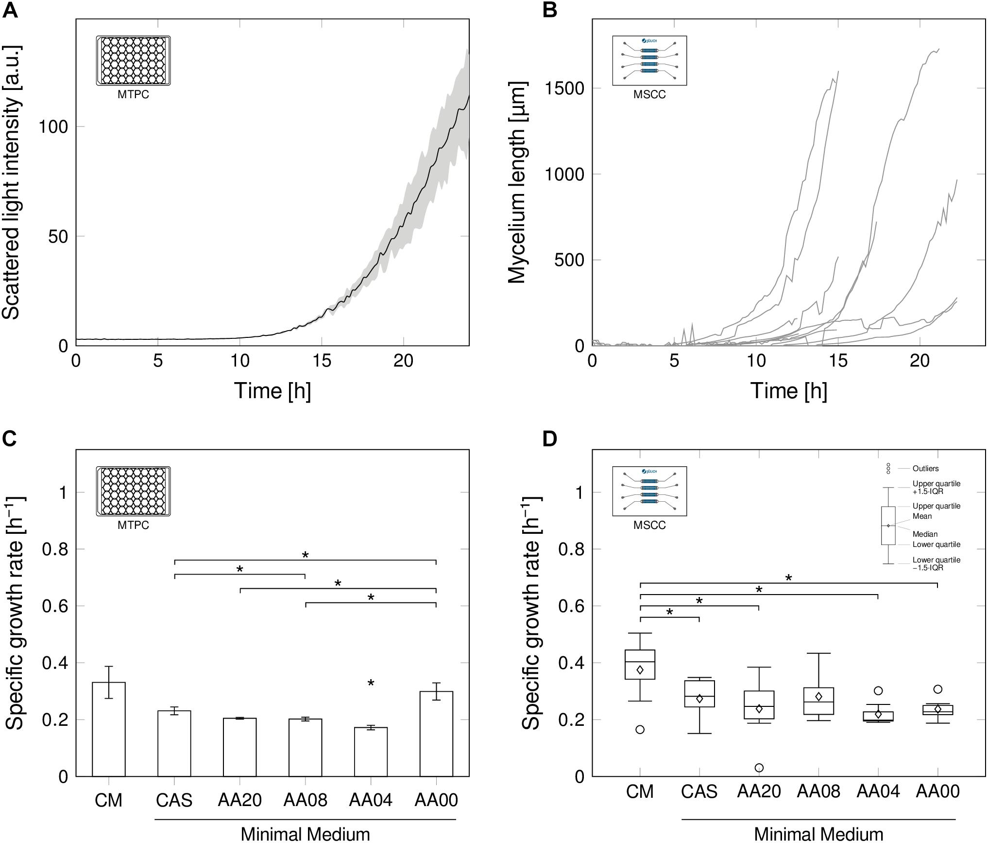 Frontiers | Germination and Growth Analysis of Streptomyces